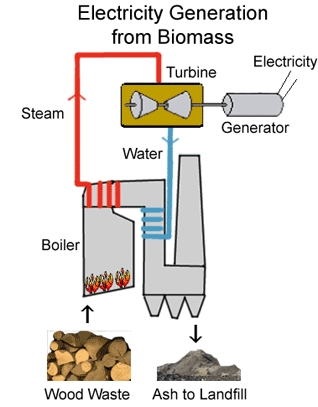 How Biomass Is Used To Make Energy